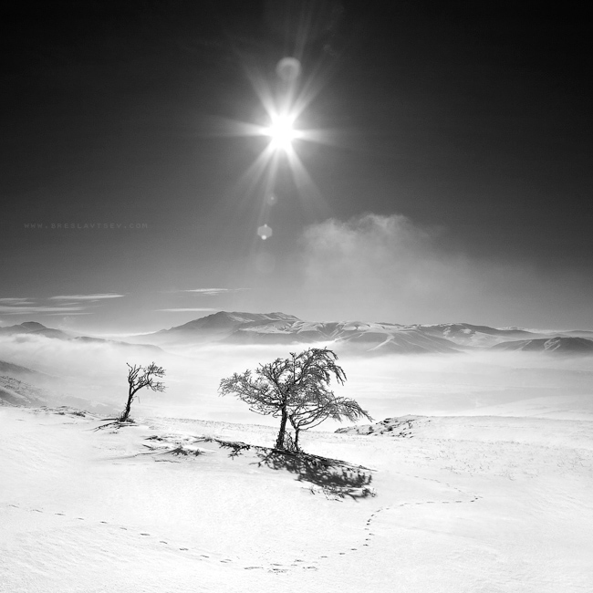 ...Crimean mountains -2-... by OlegBreslavtsev