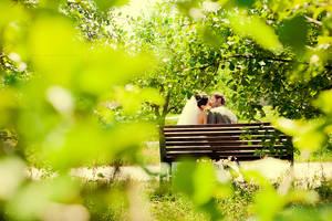 ...wed -12-... by OlegBreslavtsev