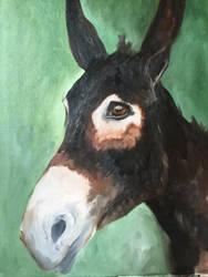 WIP - Raven - Antigua's Donkey Sanctuary  by Cwmm
