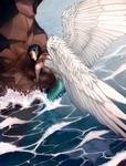 Mermaid Emergency