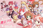 Evolution of The Magical Girl