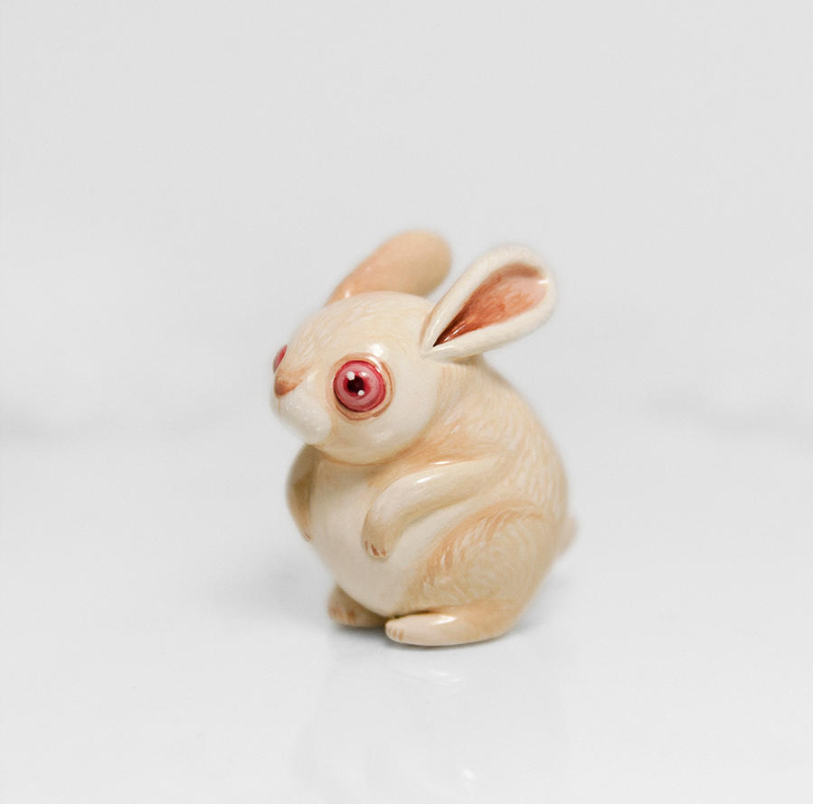 Albino Rabbit by RamalamaCreatures