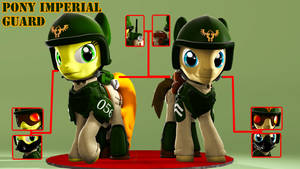 Pony Imperial Guard Armor[Download]