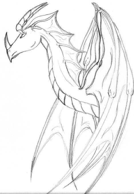 how to draw dragon wings