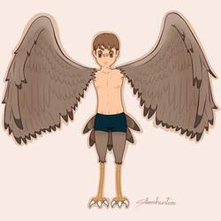 Harpy-boy