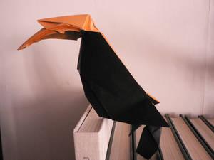 Great Hornbill ~ Calao a bec jaune