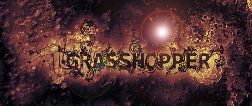 grasshopper typo by grasshopper83