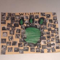 My Epic Wildlife Art Piece