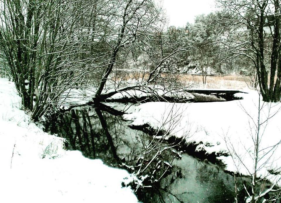 Winter Calm by IceFlea