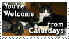 You're Welcome from Caturdays by CapnDeek373