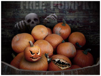 free pumpkins by CapnDeek373