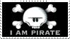 Winslow... I Am Pirate