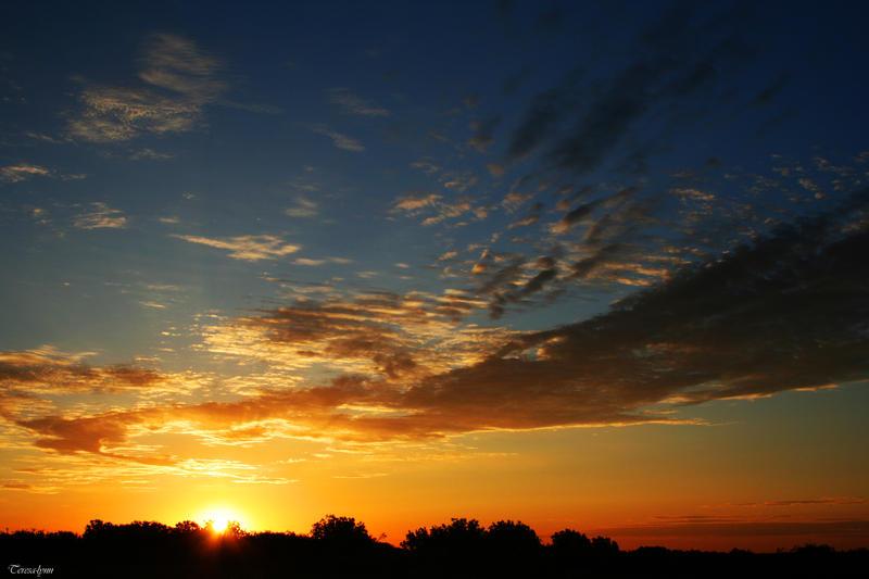 Morning Chills by teresa-lynn