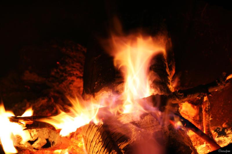 flames by teresa-lynn