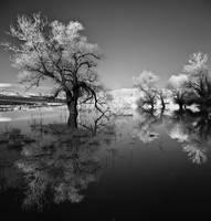 IR watercape by Chris-Lamprianidis