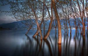 Polifitos Lake IV by Chris-Lamprianidis