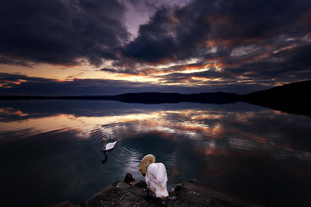 Swan lake act I by Chris-Lamprianidis