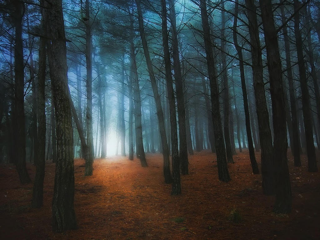 The shing path by Chris-Lamprianidis