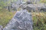Stone1 By Adipancawh