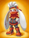 Pokesona: Aiden the Raboot