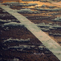 contradictions by motato