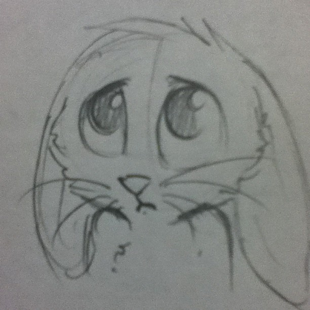 Sad Cute Bunny 33