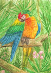 ACEO macaw for NairaNorica by Axic0n