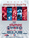 USA Wrestling and Judo Poster