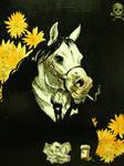 paxil the hypochondriac pony