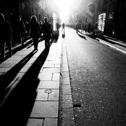 City Light Shadows