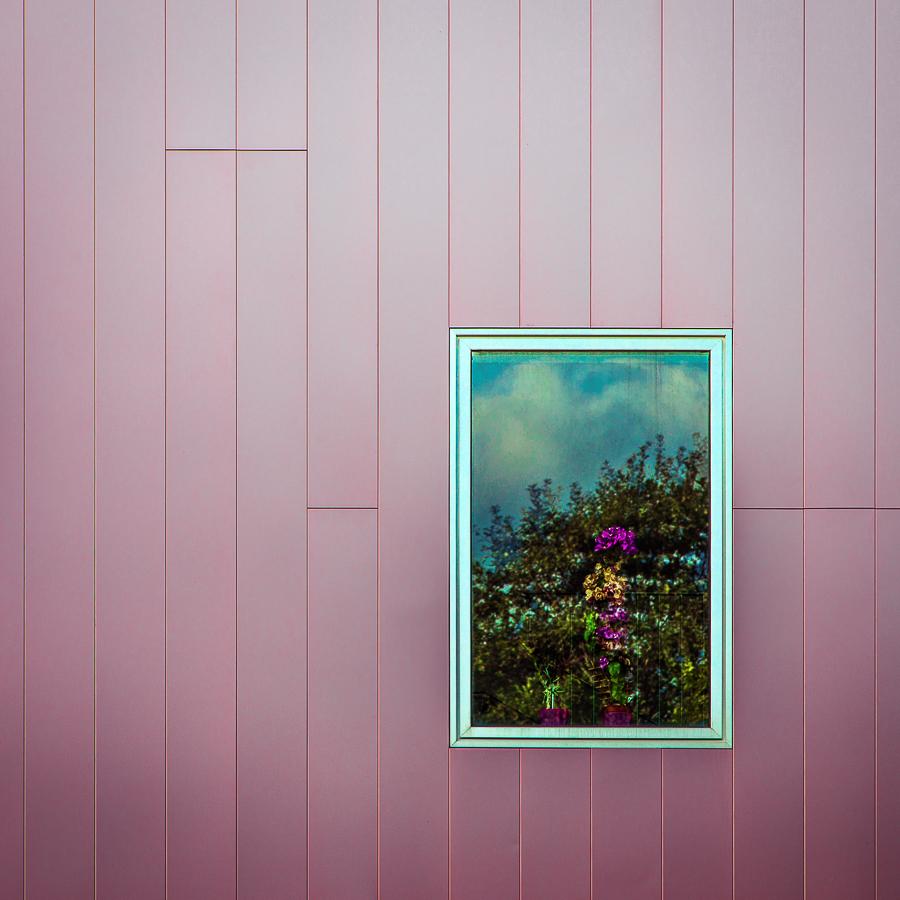 Pink Portrait by Pierre-Lagarde