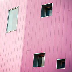 Pink Strays by Pierre-Lagarde