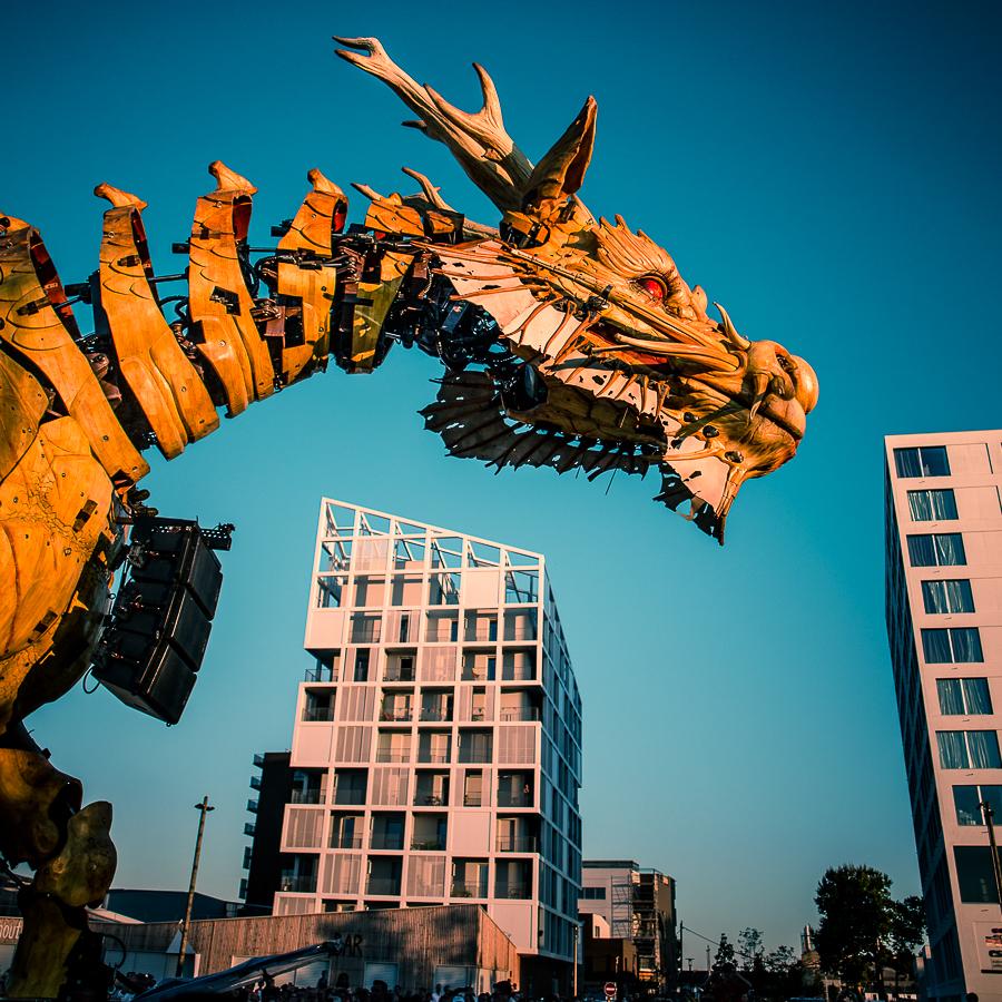 Urban Dragon by Pierre-Lagarde