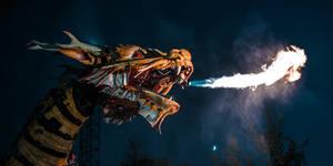 Dragon's Night Fury