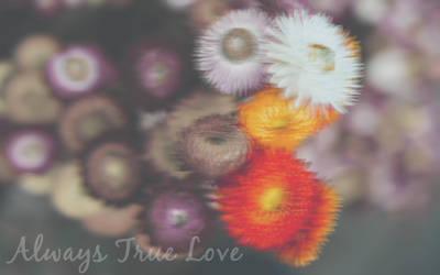 +Efect ~Always True Love~ by PaulikO-Tutoriales