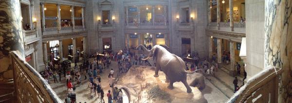 Smithsonian Panorama by AdeleEevee