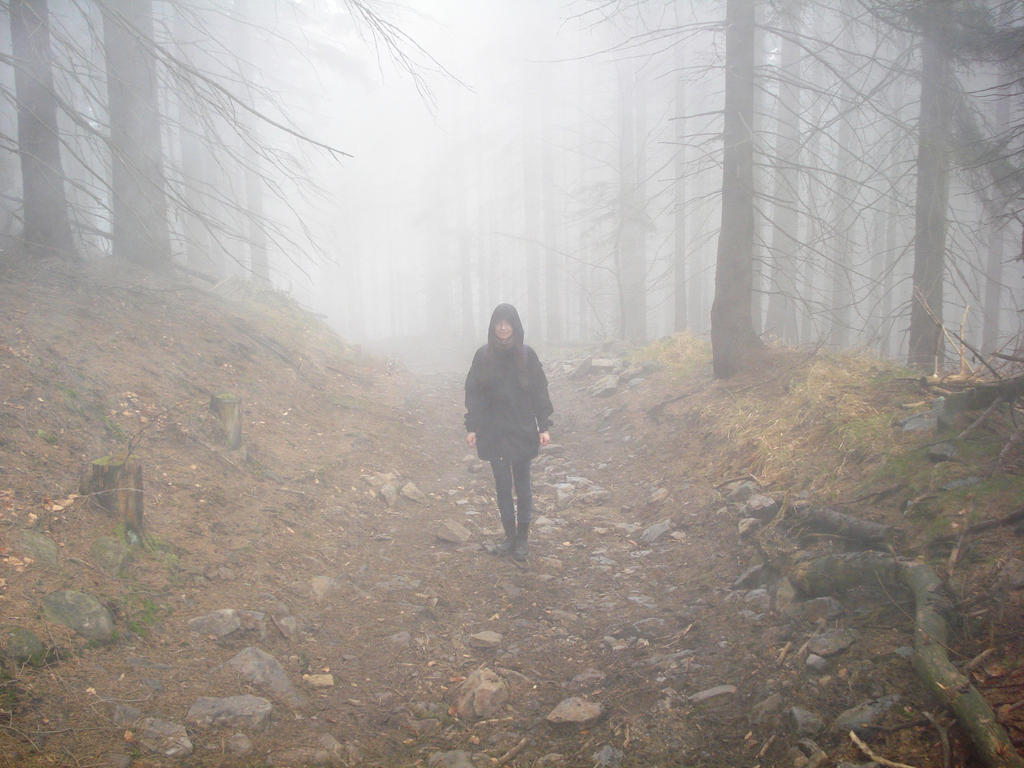 in the fog by Polin-Sam