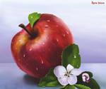 An apple by IgnisFatuusII