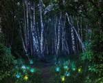 Fantasy landscape 010
