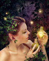 Fairy lamp by IgnisFatuusII