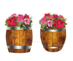 Casks with Petunia flowers stock