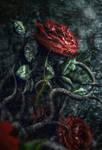 Gothic rose by IgnisFatuusII