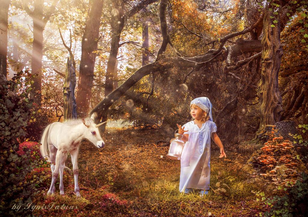 Fairytales of Autumn forest by IgnisFatuusII