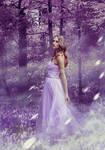 In Spellbound Forest
