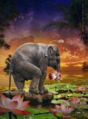 A little elephant ll by IgnisFatuusII