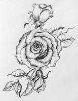 Sketchbook_003 by IgnisFatuusII