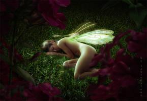 Sleeping fairy by IgnisFatuusII