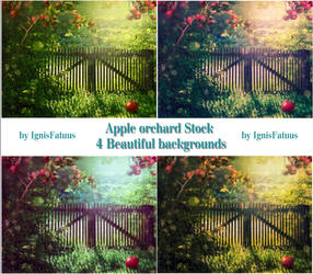 Apple orchard-Backgrounds-Stock