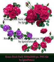 Roses Stock8 Preview by IgnisFatuus  by IgnisFatuusII