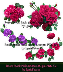Roses Stock8 Preview by IgnisFatuus
